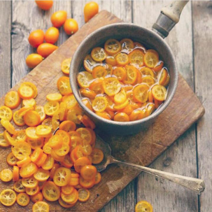 Kumquat-IGallforkedup