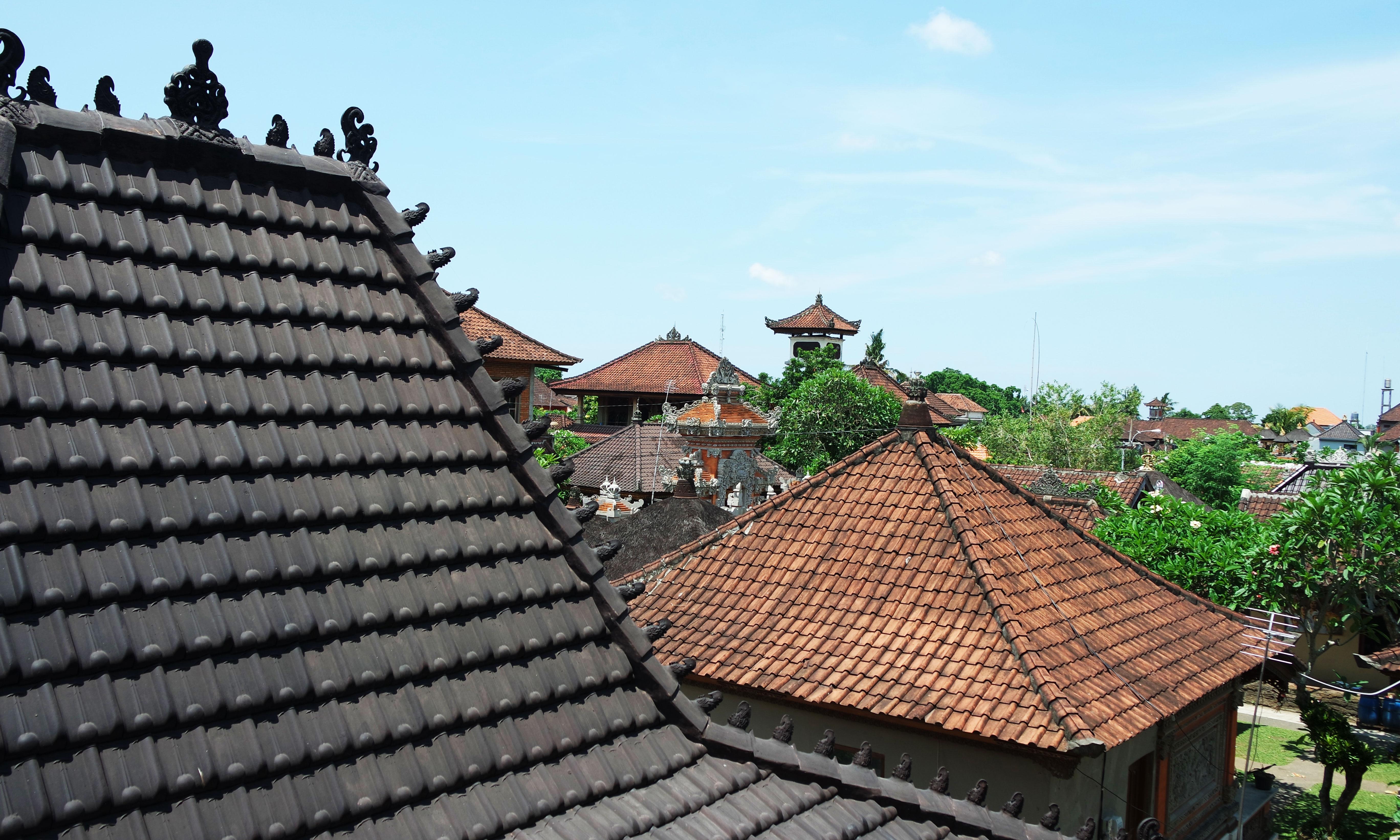 ubud-bali-hotel-cosy-pas-cher-vue