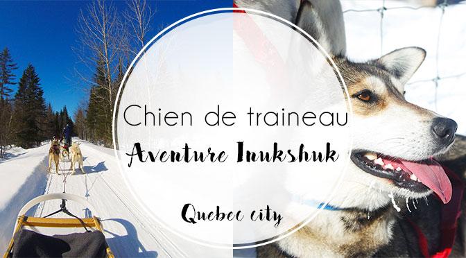 Chien de traineau quebec city avec aventure inukshuk for Balade chien de traineau doubs