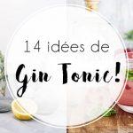14 Idées de Gin Tonic