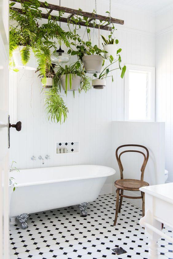 baignoire, salle de bain, plantes, plante verte, home, inspiration