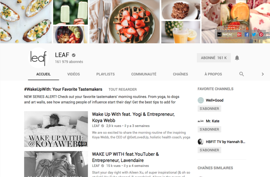 youtube, favorite, leaf